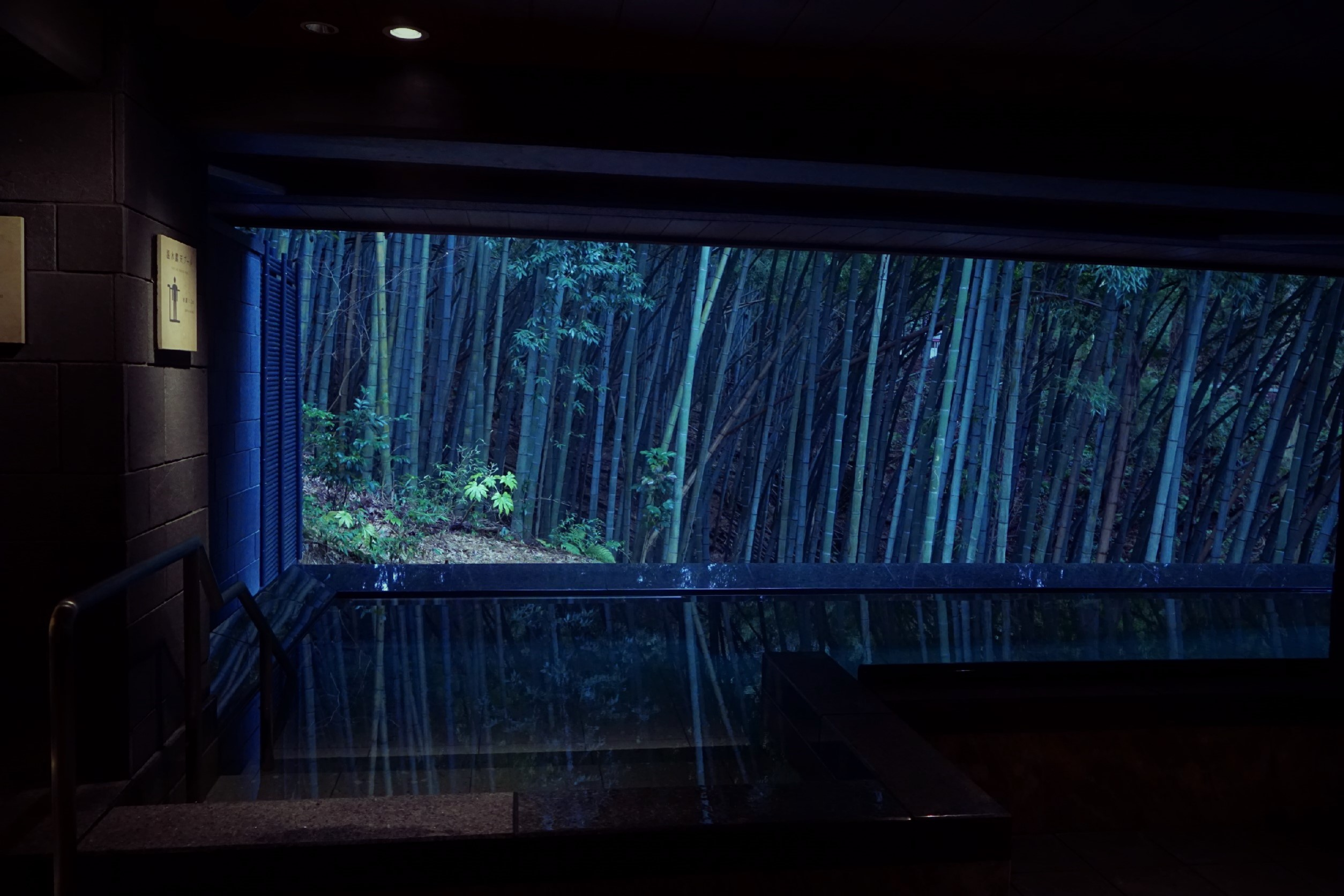 森の栖にある温水プール、竹林が見える。